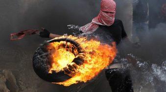 AFP et Reuters : les meilleures photos de l'année 2013
