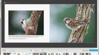 Livre photo Blurb le test grandeur nature