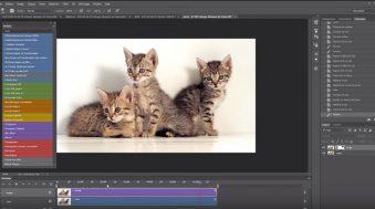 Comment faire un cinemagraph avec Animaphoto 2.0